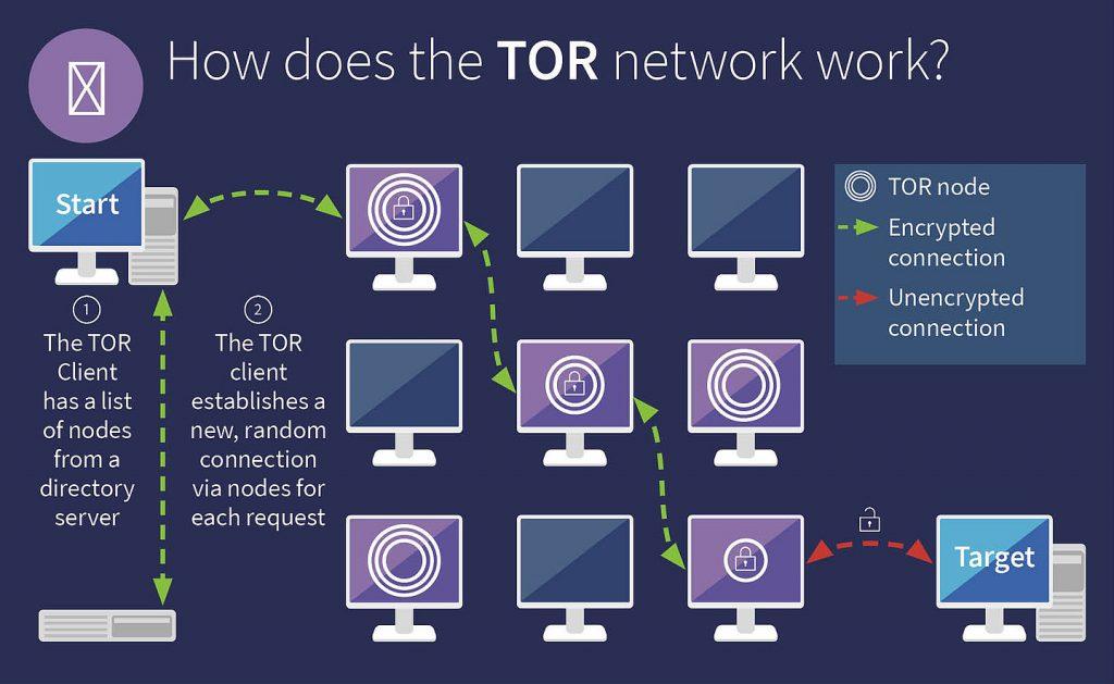G DATA Infographic Tor V3 EN 930fd1127b
